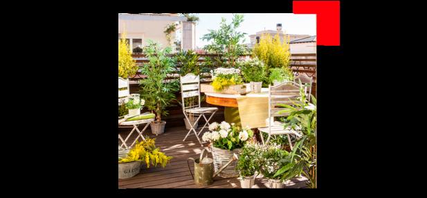 Terraza con plantas y madera